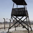 Auschwitz-Birkenau Nazi Concentration Camp - Poland — Stock Photo