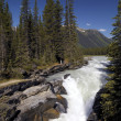 Kootenay National Park - British Columbia - Canada — Stock Photo