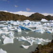 Icebergs - Largo Grey - Patagonia - Chile — Stock fotografie