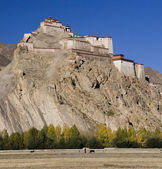 Tibet - Gyantse Fortress — Stock Photo