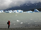 Largo Grey - Torres del Paine National Park - Patagonia - Chile — Stock Photo
