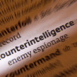 Counterintelligence - Dictonary Definition - Stock Photo
