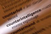 Counterintelligence - Dictonary Definition — Stock Photo
