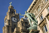 The Liver Building - Liverpool - England — Stock Photo