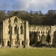 Rievaulx Abbey - Yorkshire - United Kingdom - 图库照片