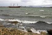 Whalebone Cove - Falkland Islands — Stock Photo