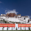 Potala Palace - Lhasa - Tibet Autonomous Region of China — Stock Photo #17685251