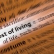 Stock Photo: Cost of Living - Dictionary Definition