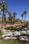 Damaraland - namibia — Zdjęcie stockowe