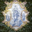 Delft Plaque - Jardim Botanico on Island of Madeira — Stock Photo #17741259