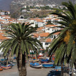 Camara de Lobos - Madeira - Stock Photo