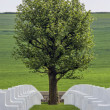 War Cemetery - The Somme - France - Stock Photo