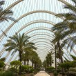 City of Arts & Sciences - Valencia - Spain — Stock Photo