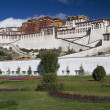 PotalPalace - Lhas- Tibet — Stock Photo #17831375