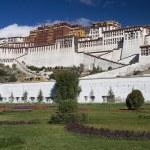 Potala Palace - Lhasa - Tibet — Stock Photo #17831375