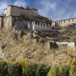 Gyantsie Fort - Gyantse - Tibet — Stock Photo