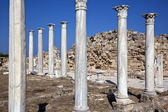 Salamis Roman Ruins - Turkish Cyprus — Stock Photo