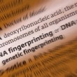 DNA - Dictionary Definition - Stock Photo