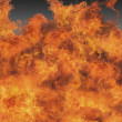 Fire - Inferno - Stock Photo