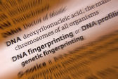 DNA - Dictionary Definition — Stock Photo