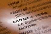 Castrate - Dictionary Definition — Stock Photo