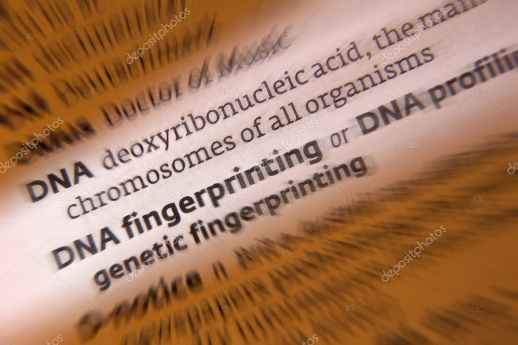 the description of the deoxyribonucleic acid dna Dna is a chain of nucleotides that carry genetic information in their sequence it contains all the information required to build and maintain an organism.