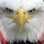 United States of America - Patriotism — Stock Photo