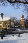 Planty krakow - polonya — Stok fotoğraf