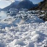 Greenland - Northwest Fjord - Scoresbysund — Stock Photo #18299725