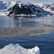 Paradise Bay - Antarctica — Stock Photo #18307703