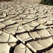 Dry and cracked earth - Namib Desert - Namibia — Stock Photo