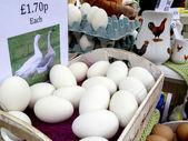 Goose Eggs - Market Stall — Stock Photo