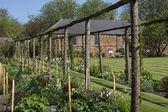 壁国家花园-约克-英国 — 图库照片