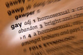 Gay - Dictionary Definition — Stock Photo