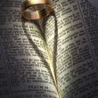 Stock Photo: Wedding Ring - Heart Shadow