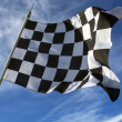 Chequered Flag - Winner — Stock Photo #33466001