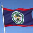 Flag of Belize - Central America — Stock Photo