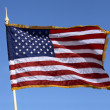 Flag of the United States of America — Foto Stock