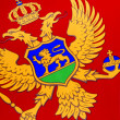 Detail on flag of Montenegro - Europe — Stock Photo #36527915