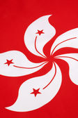 Detail on the flag of Hong Kong — Stock Photo