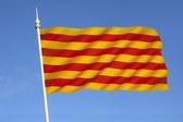 Flag of Catalonia - Spain — Stock Photo