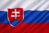 The flag of Slovakia — Stock Photo