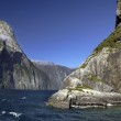 Milford Sound - New Zealand — Stock Photo #46394125