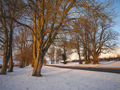 Country Road in Winter - Yorkshire - England — Stock Photo