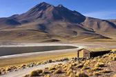 Laguna Miscanti - Andes Mountains - Atacama Desert — Stock Photo