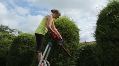 Young Woman Trimming a Hedge — Stock Video