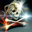 The skull - Stock Photo