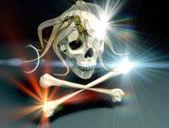 The skull — Stock Photo