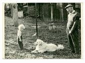 Dziadek, wnuk i pies — Zdjęcie stockowe