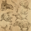 Animals — Stockvector #29755337